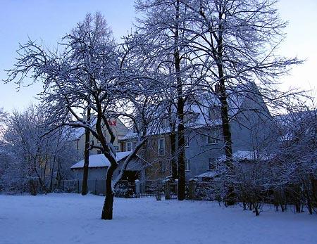 zima_450.jpg